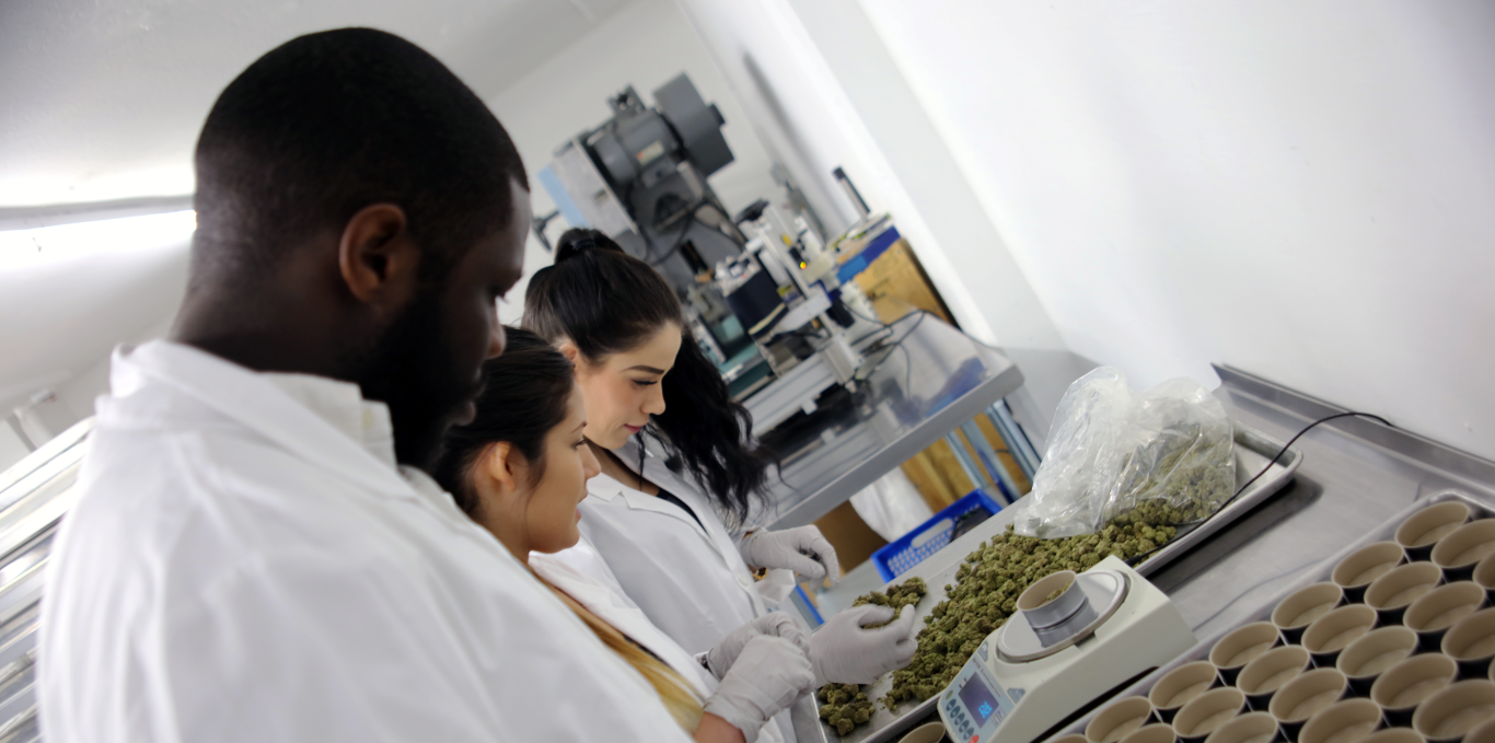what-is-california-compliance-packaging-really-ccmup-cannabis-laboratory-inspection